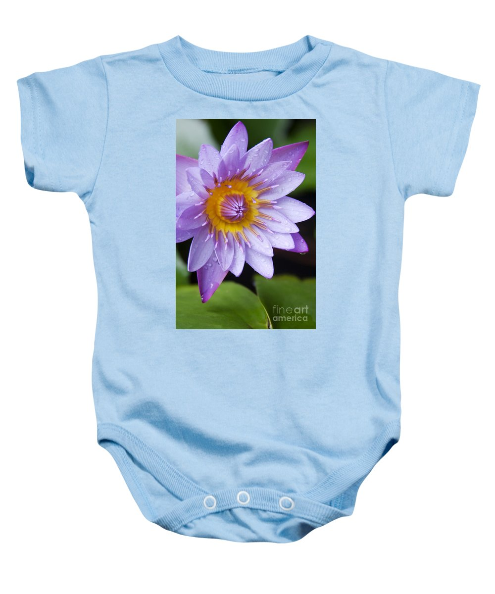 Aloha Baby Onesie featuring the photograph The Lotus Flower by Sharon Mau