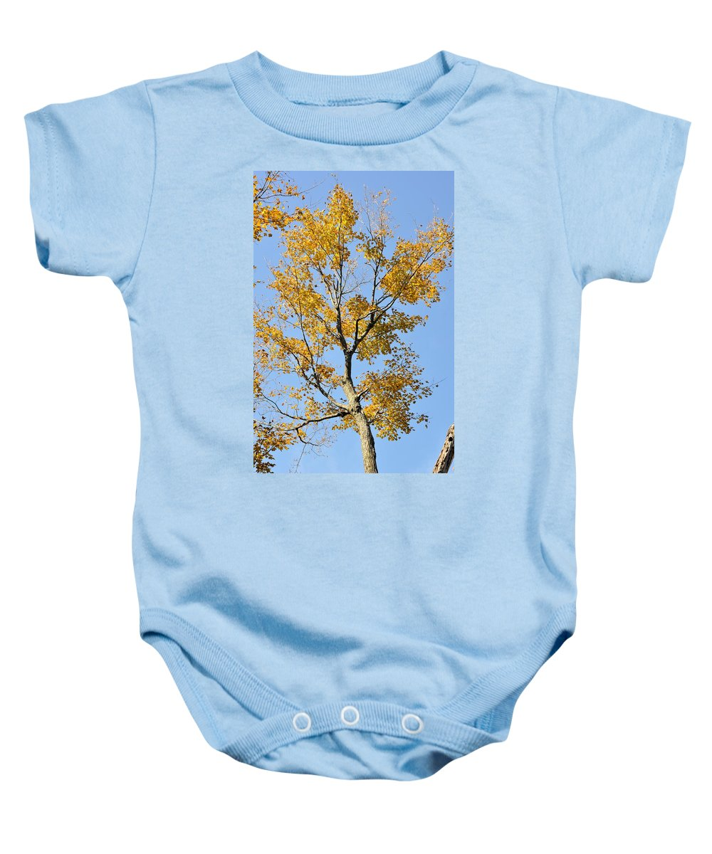Maple Baby Onesie featuring the photograph A Touch Of Gold by Valerie Kirkwood