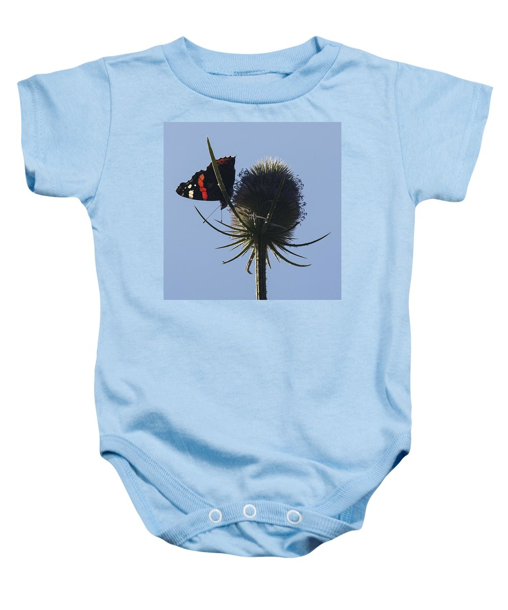 Red Admiral Baby Onesie featuring the photograph Admiral Teasel by Richard Thomas