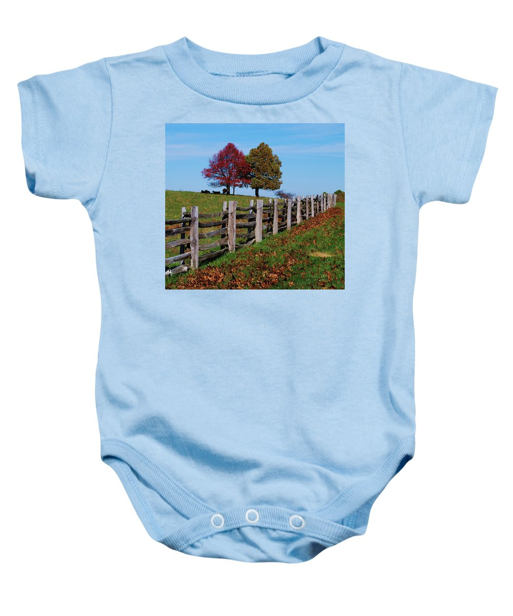 Trees Baby Onesie featuring the photograph Along the fence by Eric Liller