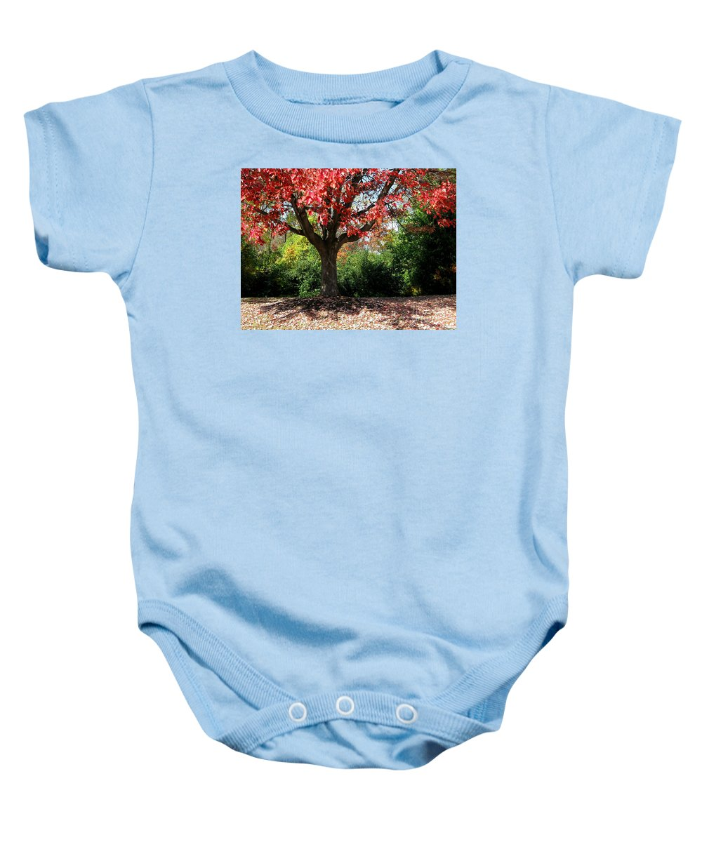 Autumn Baby Onesie featuring the photograph Autumn Ablaze by Ann Horn