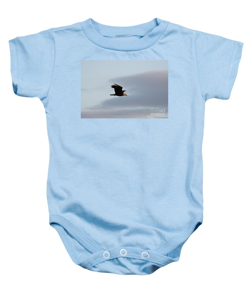 Bald Eagle Baby Onesie featuring the photograph Bald Eagle At Sunset by David Arment
