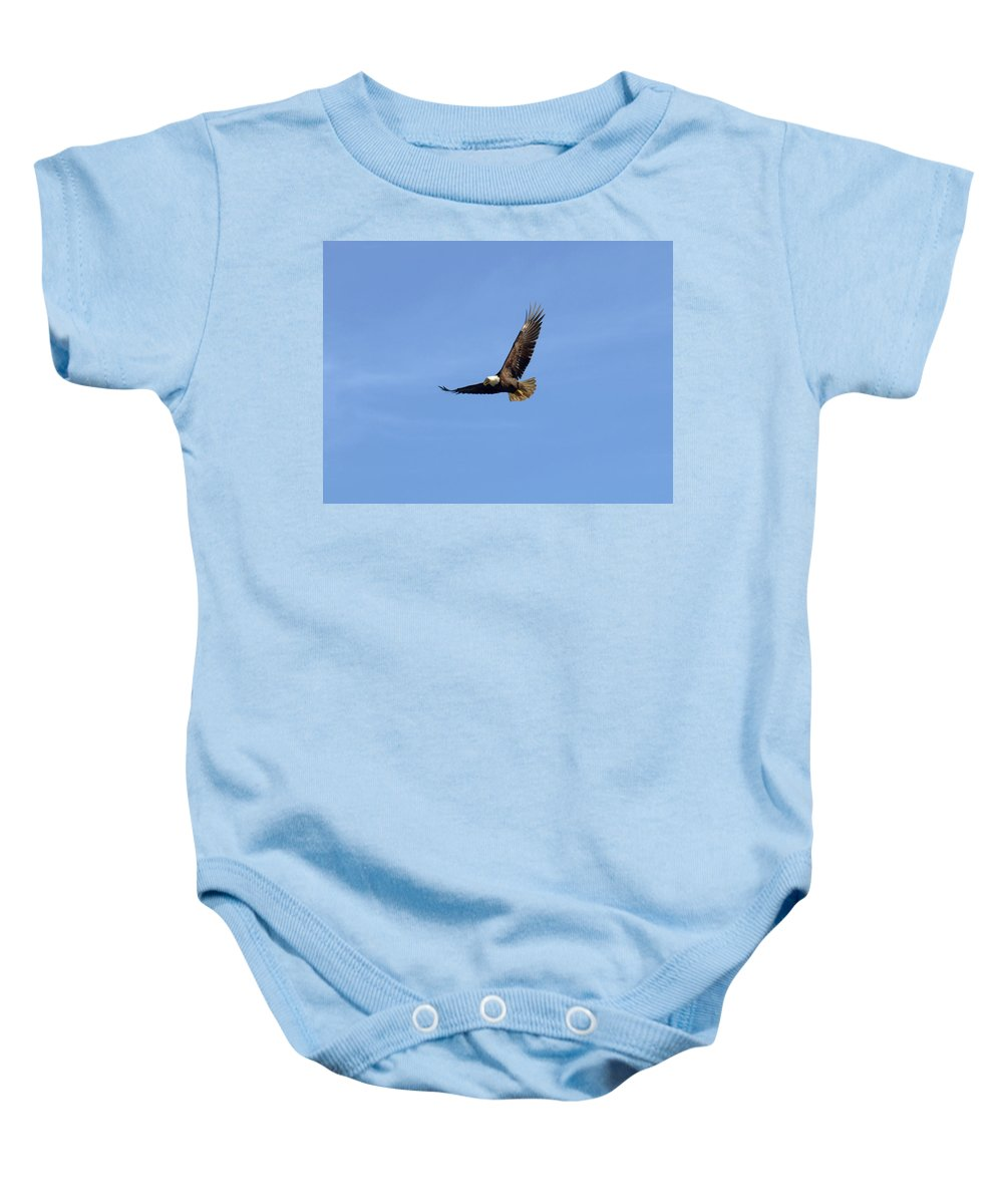 Eagle Baby Onesie featuring the photograph Bald Eagle Flying In The Blue Sky by Jessica Foster