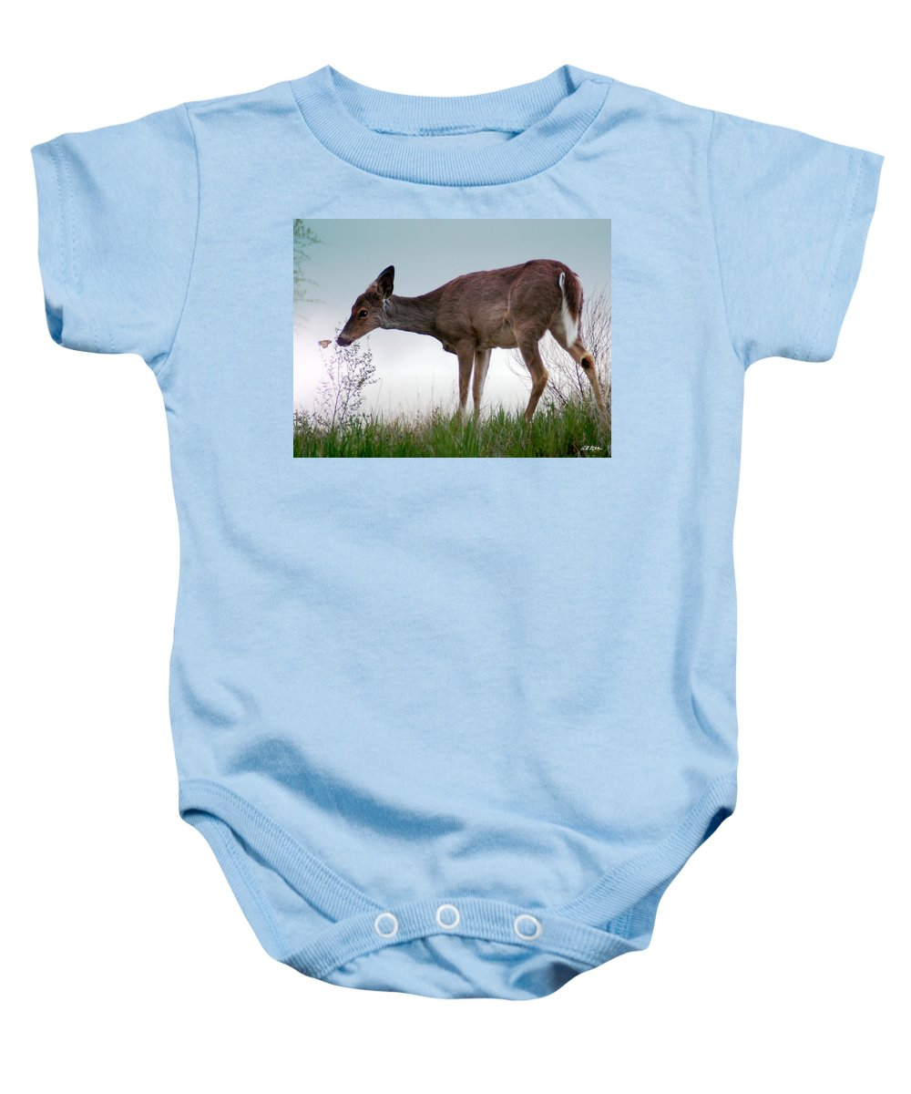 Deer Baby Onesie featuring the photograph Bambi 2 by Bill Stephens