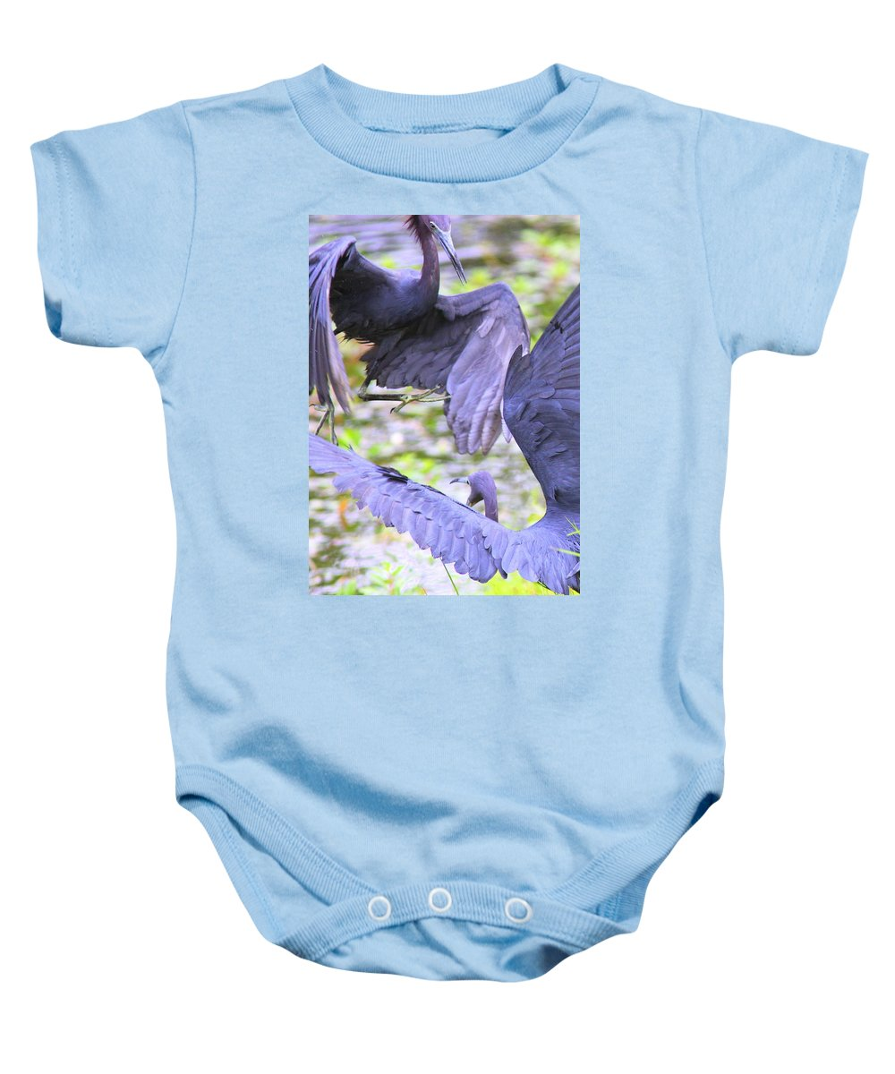 Herons Baby Onesie featuring the photograph Birds - Fighting - Herons by Travis Truelove