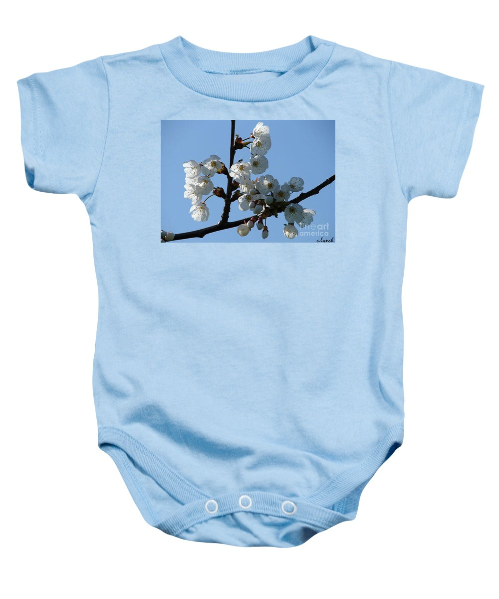 Blossoms Baby Onesie featuring the photograph Blossoms by Carol Lynch