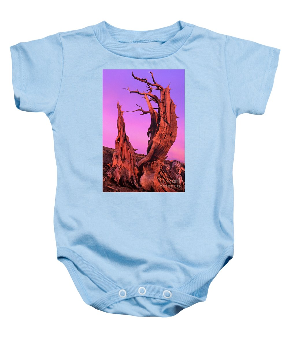 Bristlecone Baby Onesie featuring the photograph Bristlecone Pine At Sunset White Mountains Californa by Dave Welling