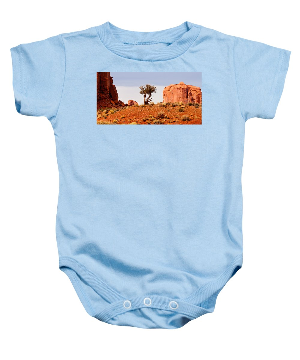 Monument Valley Baby Onesie featuring the photograph Bristlecone Pine by Peter Tellone