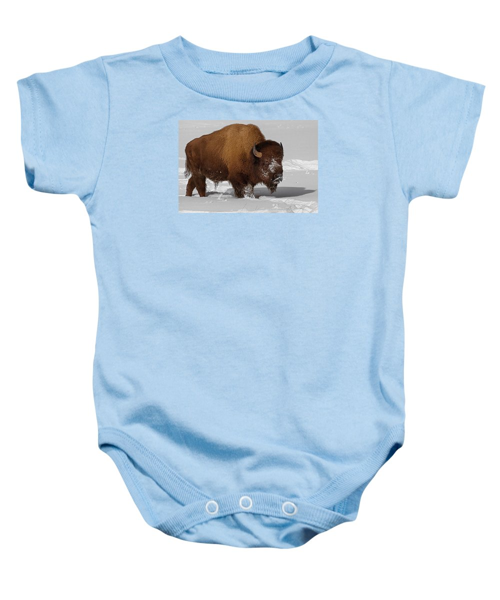 Bison Baby Onesie featuring the photograph Burly Bison by Priscilla Burgers