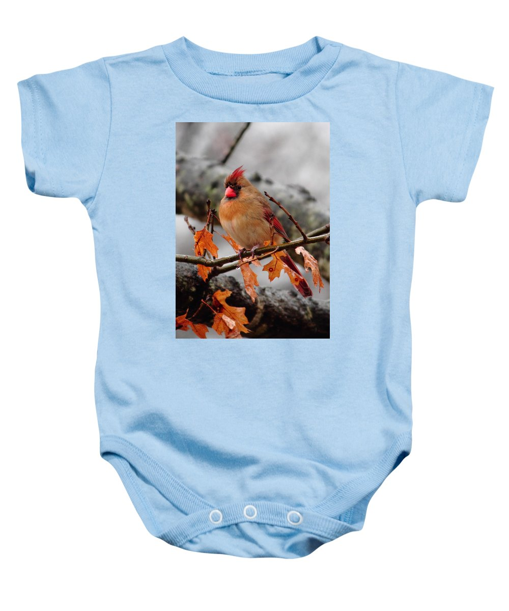 Cardinal Baby Onesie featuring the photograph Cardinal In The Rain by Karen Beasley