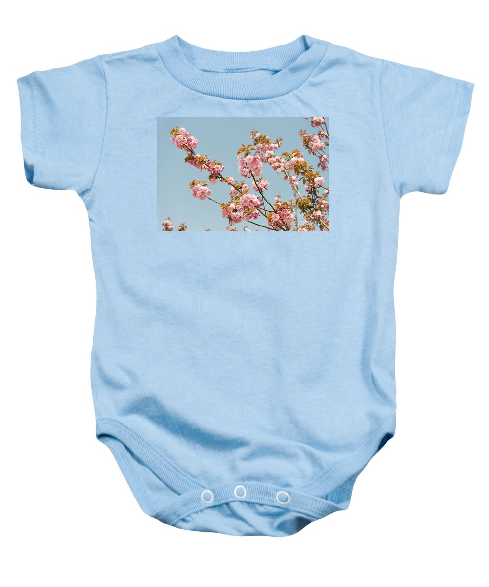 Asia Baby Onesie featuring the photograph Cherry Blossom by Jacek Malipan