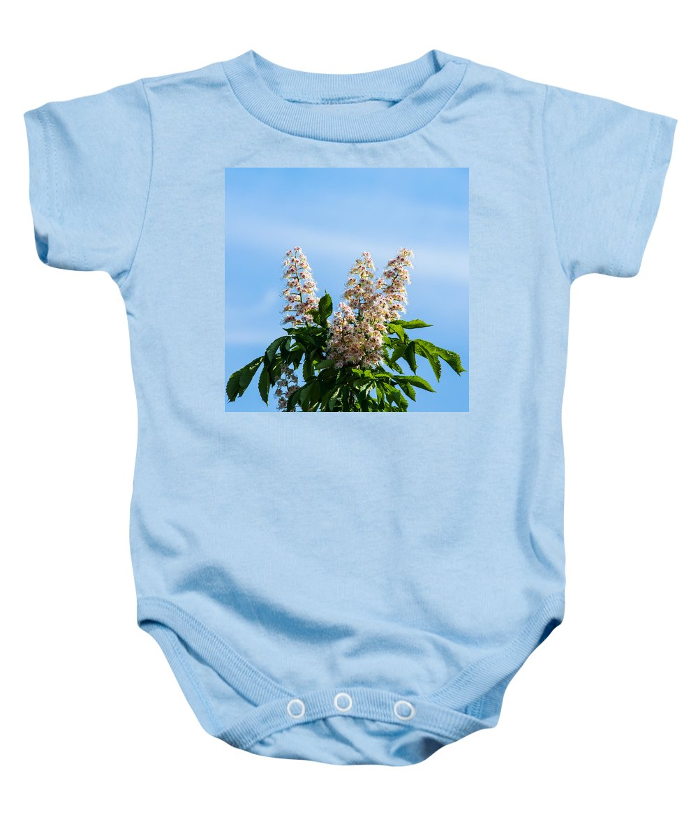 Abloom Baby Onesie featuring the photograph Chestnut Tree Blossoms - Featured 2 by Alexander Senin