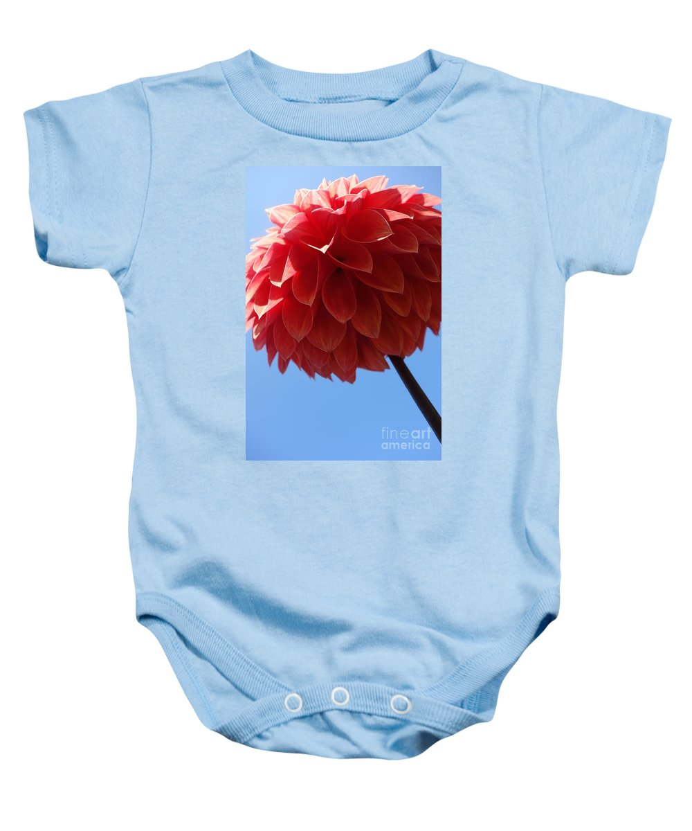 Flowing Baby Onesie featuring the photograph Dahlia #3 by Jacqueline Athmann