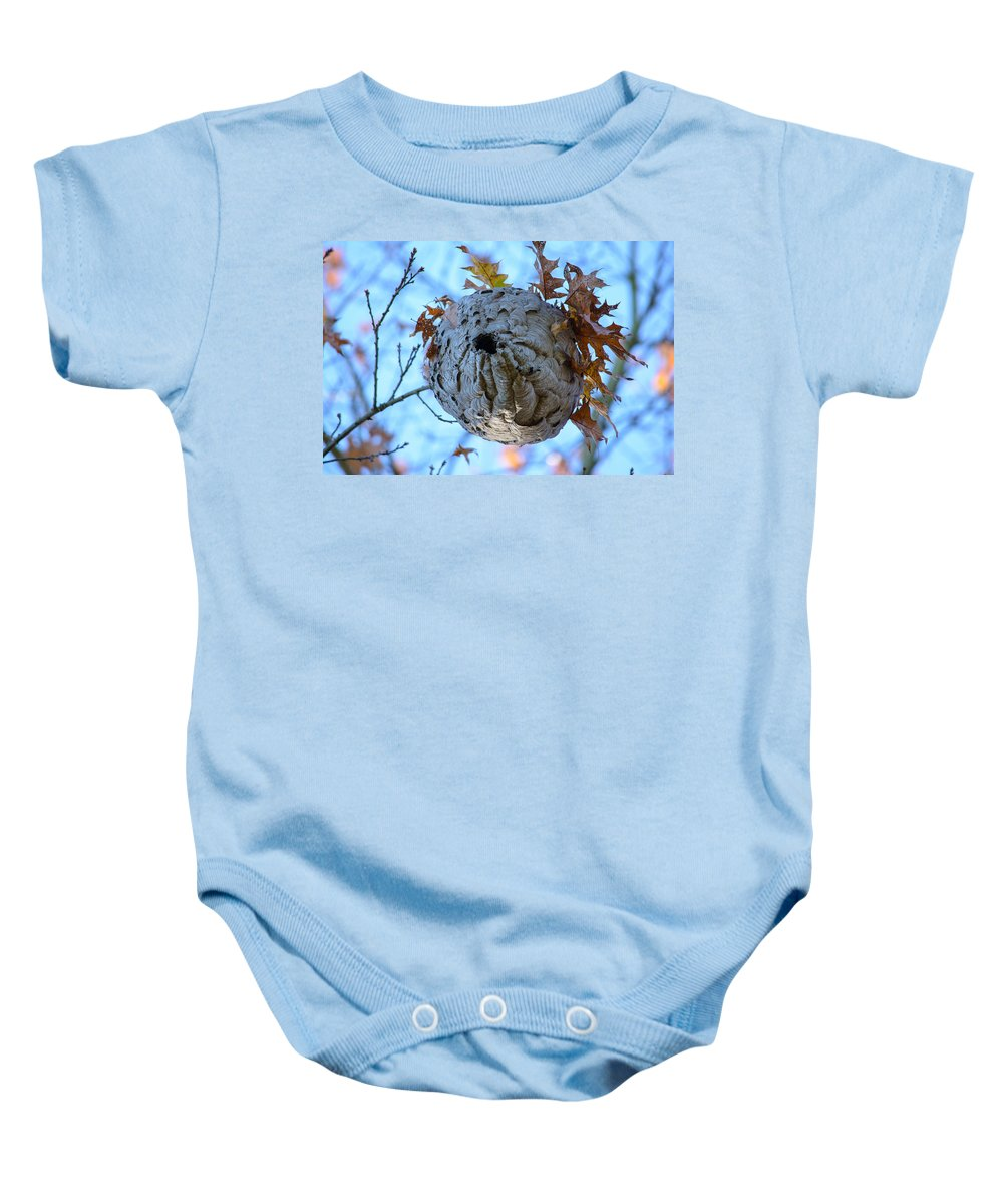 Wasp Nest Baby Onesie featuring the photograph Danger Zone by Tikvah's Hope