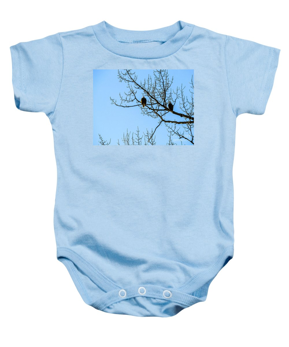Bald Eagle Baby Onesie featuring the photograph F2110987 by David Fabian