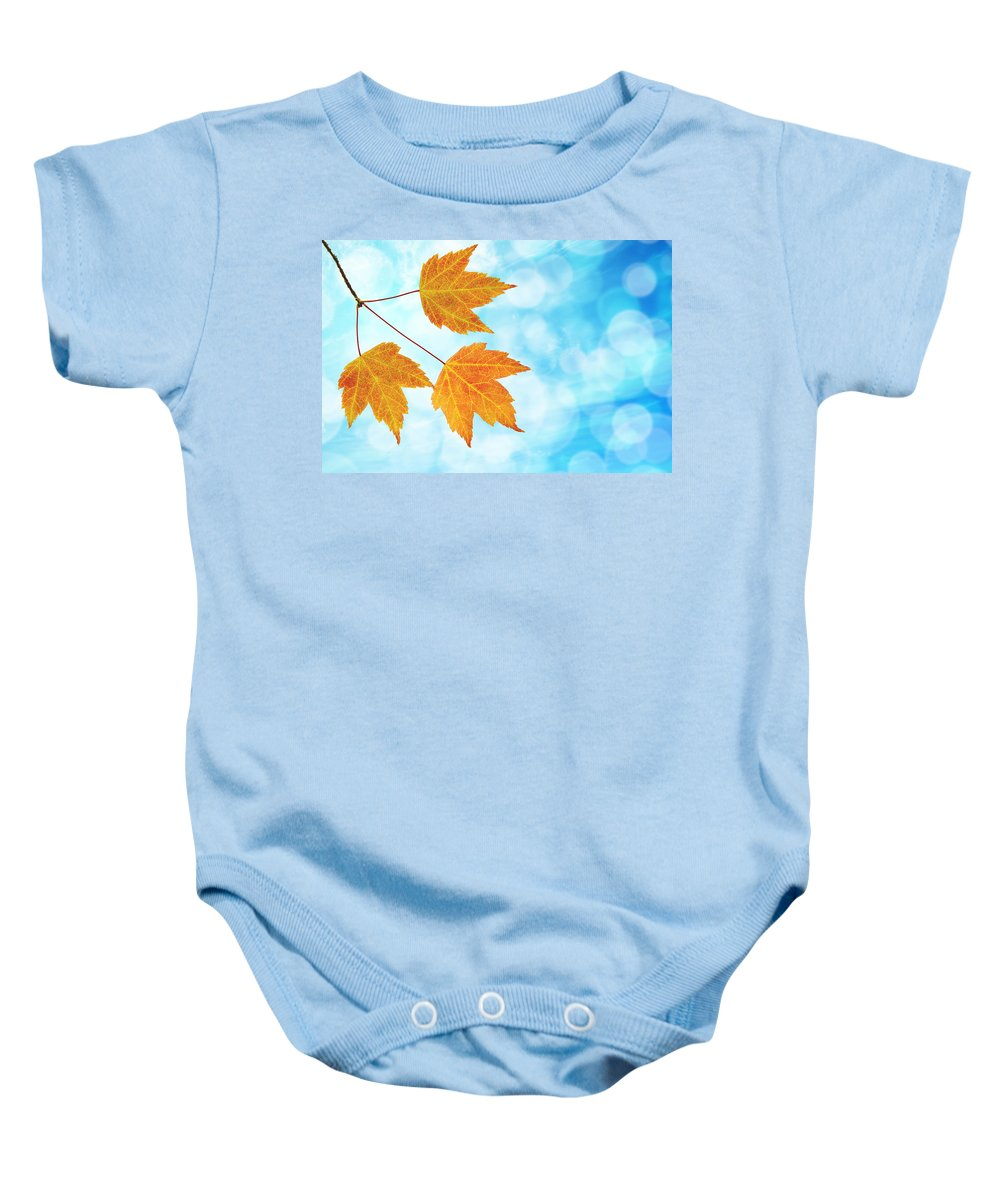 Fall Baby Onesie featuring the photograph Fall Maple Leaves Trio With Blue Sky by Jit Lim
