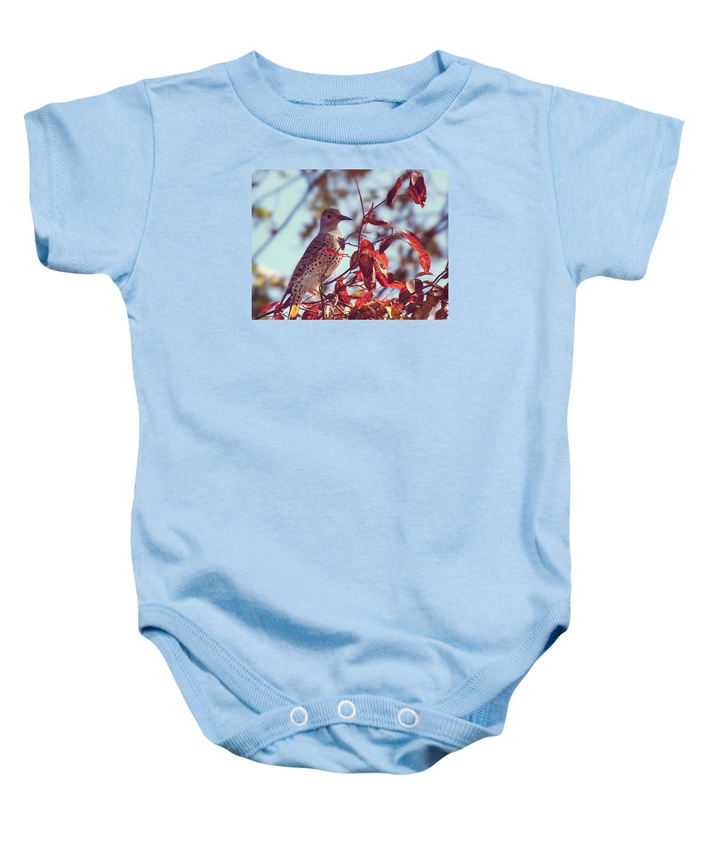 Northern Flicker Baby Onesie featuring the photograph Flicker In Autumn by Melanie Lankford Photography