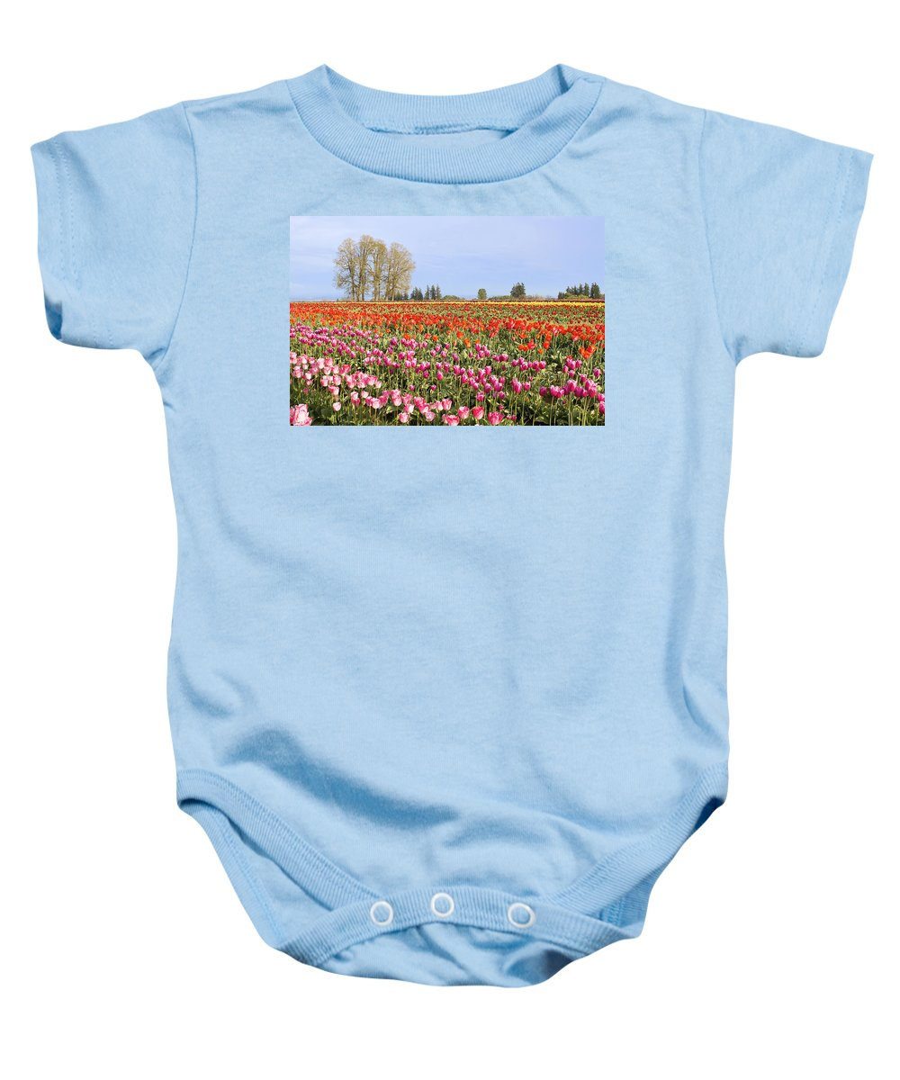 Tulips Baby Onesie featuring the photograph Flowers Blooming In Tulip Field In Springtime by Jit Lim