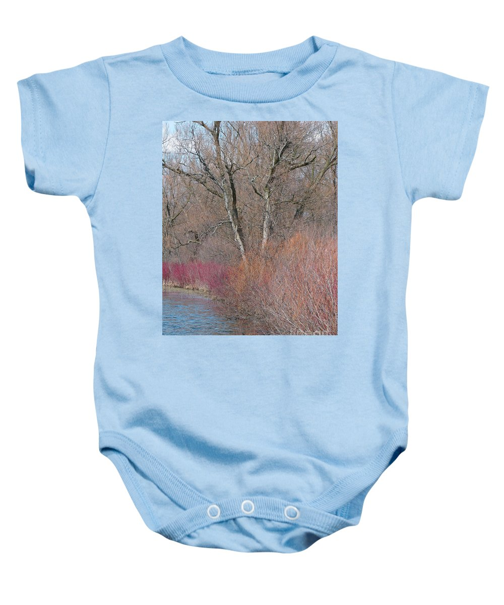 Spring Baby Onesie featuring the photograph Hint Of Spring by Ann Horn