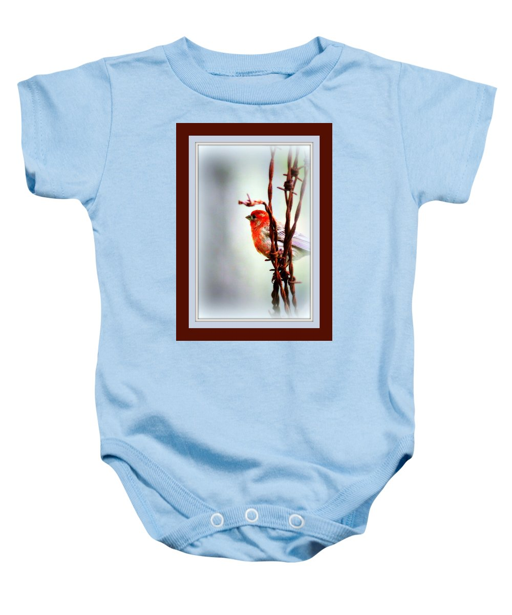 House Finch Baby Onesie featuring the photograph House Finch - Finch 2241-004 by Travis Truelove