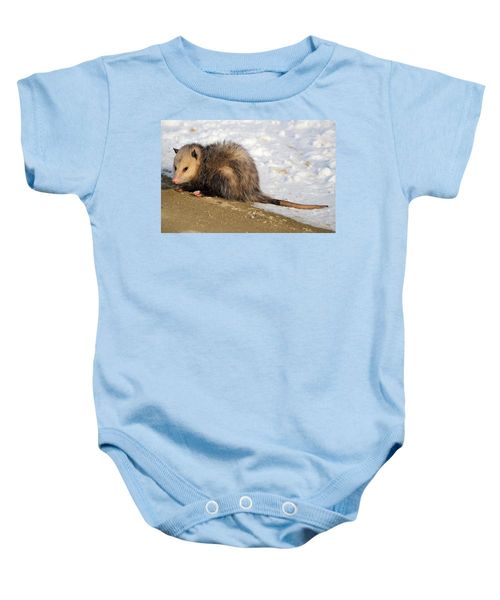 Possum Baby Onesie featuring the photograph I'm A Possum by Bonfire Photography