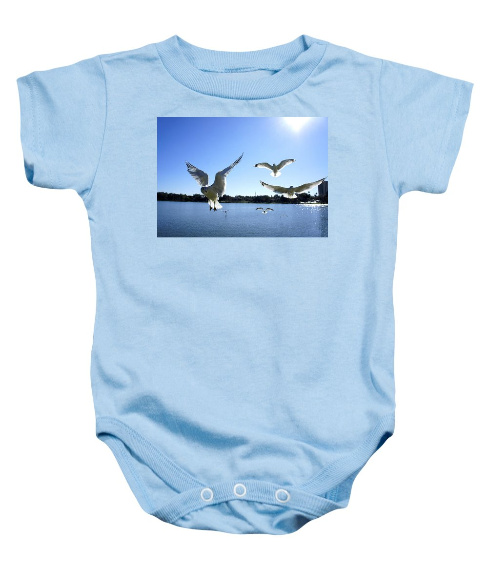 Seagull Baby Onesie featuring the photograph In Flight by Laurie Perry