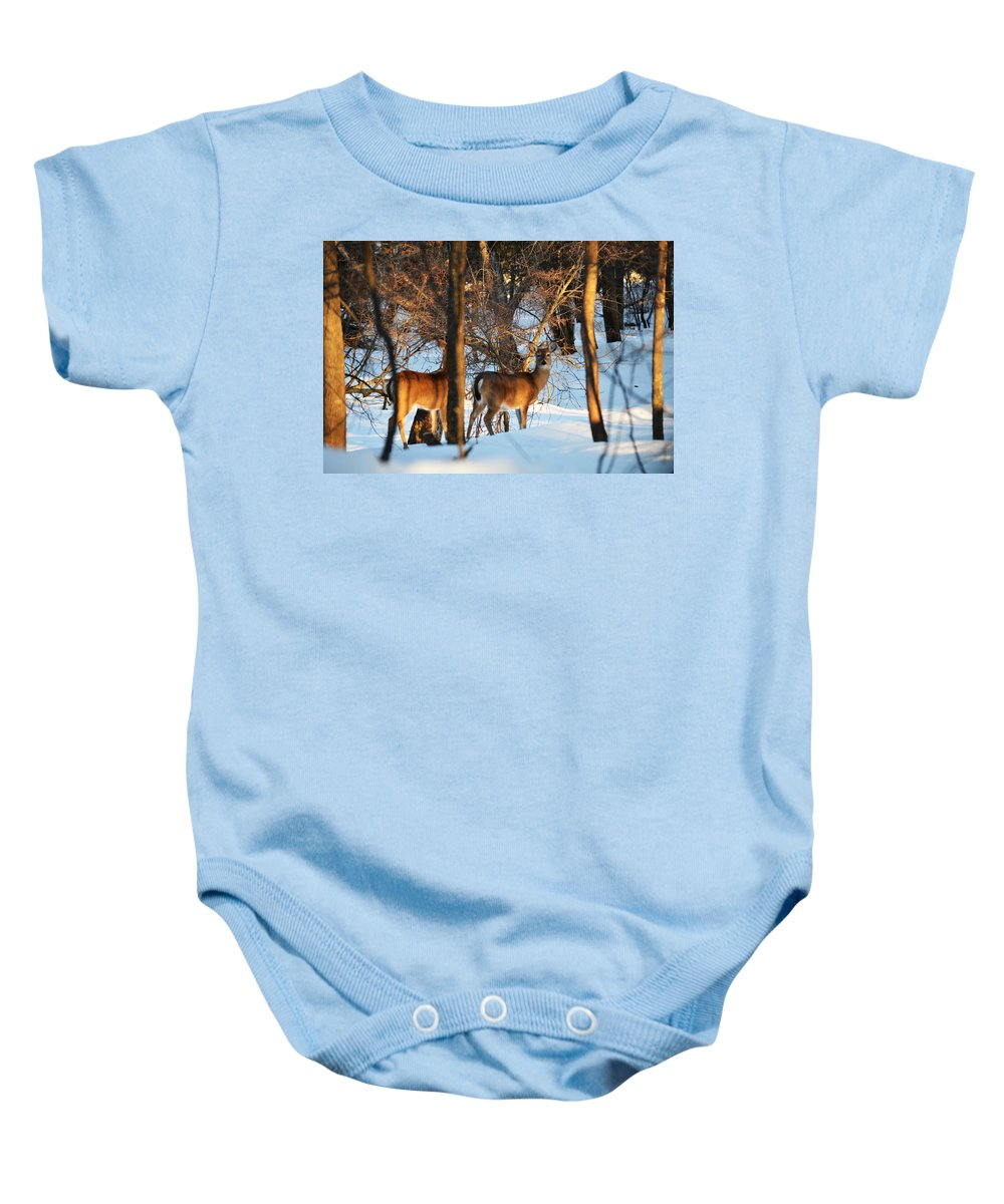 Michigan Baby Onesie featuring the photograph In The Forest by Linda Kerkau