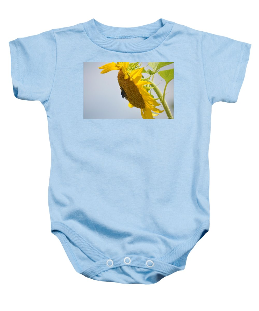 In The Wind - Sunflower Baby Onesie featuring the photograph In The Wind - Sunflower by Maria Urso