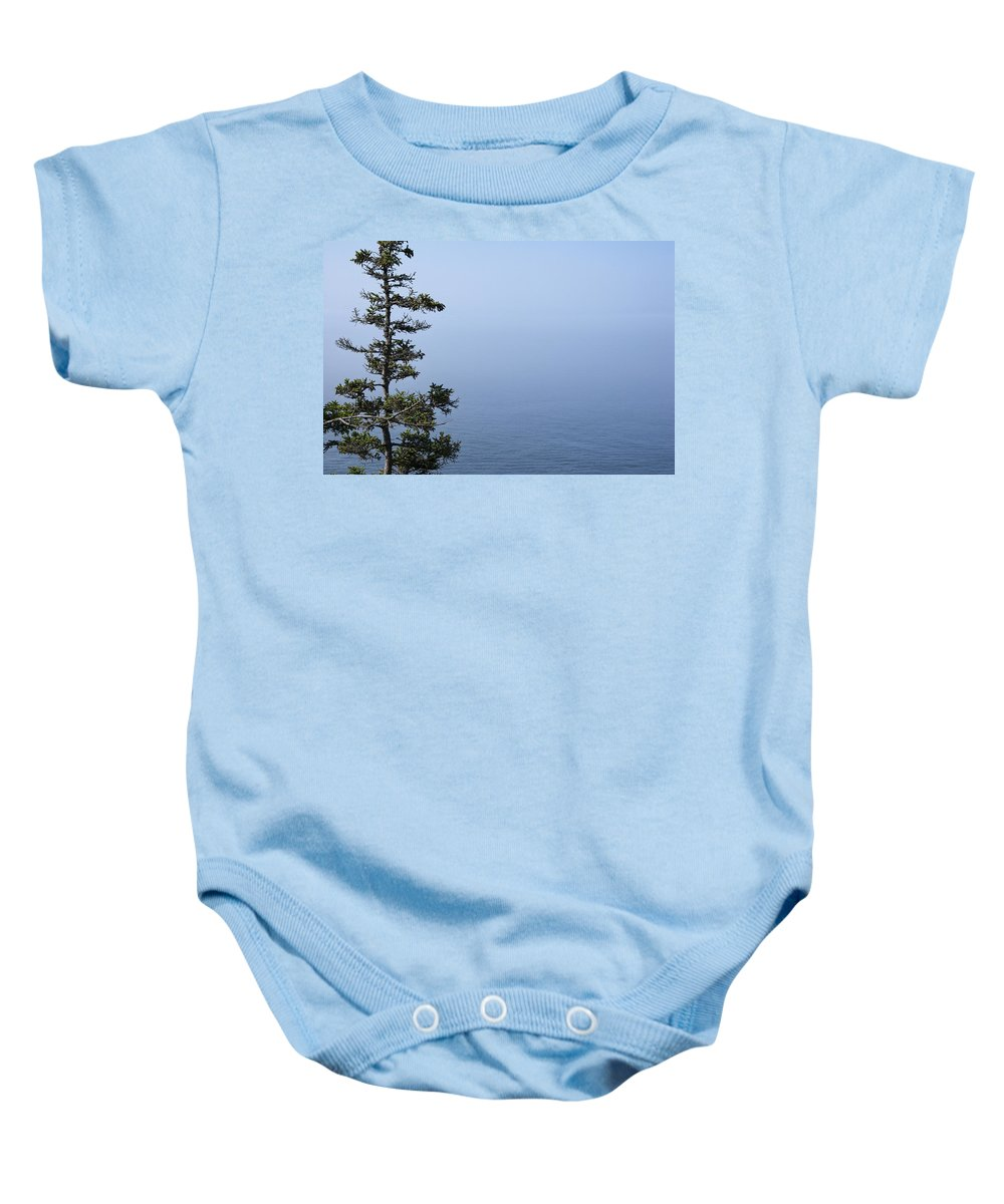 Art Baby Onesie featuring the photograph Lone Tree By The Water In Acadia National Park by Randall Nyhof