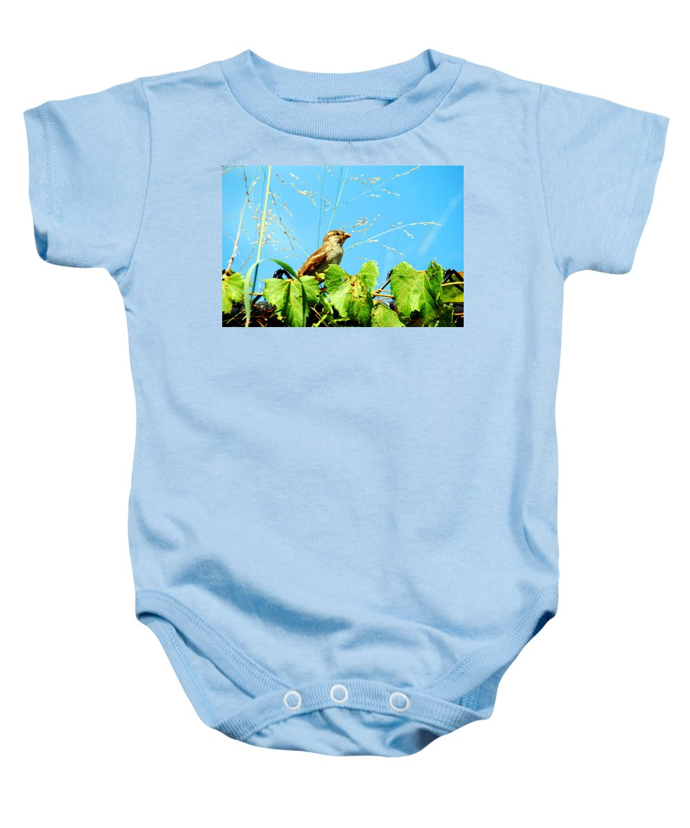 Sparrow Baby Onesie featuring the photograph Lookout by Optical Playground By MP Ray