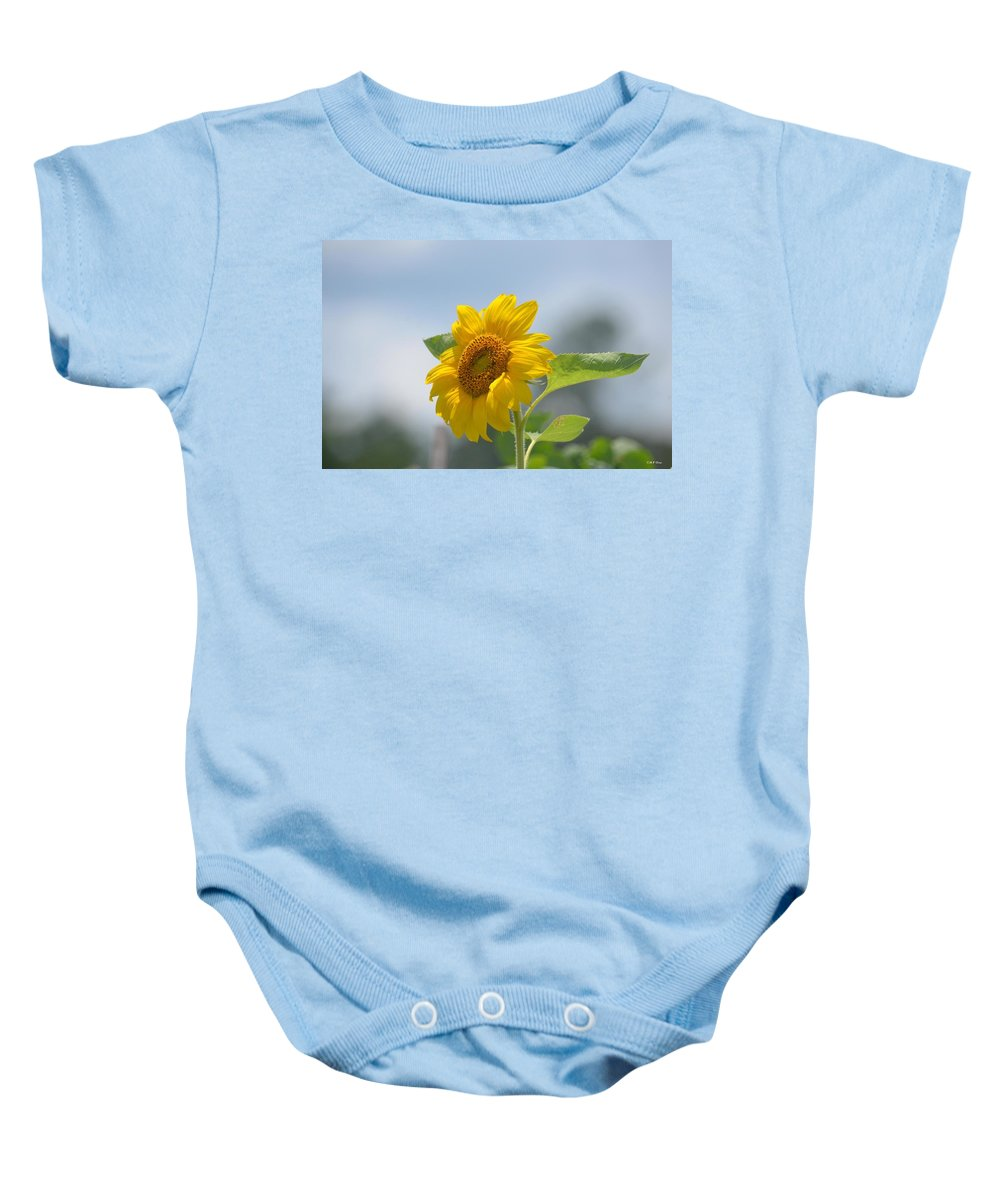 Lovely Yellow Sunflower Baby Onesie featuring the photograph Lovely Yellow Sunflower by Maria Urso