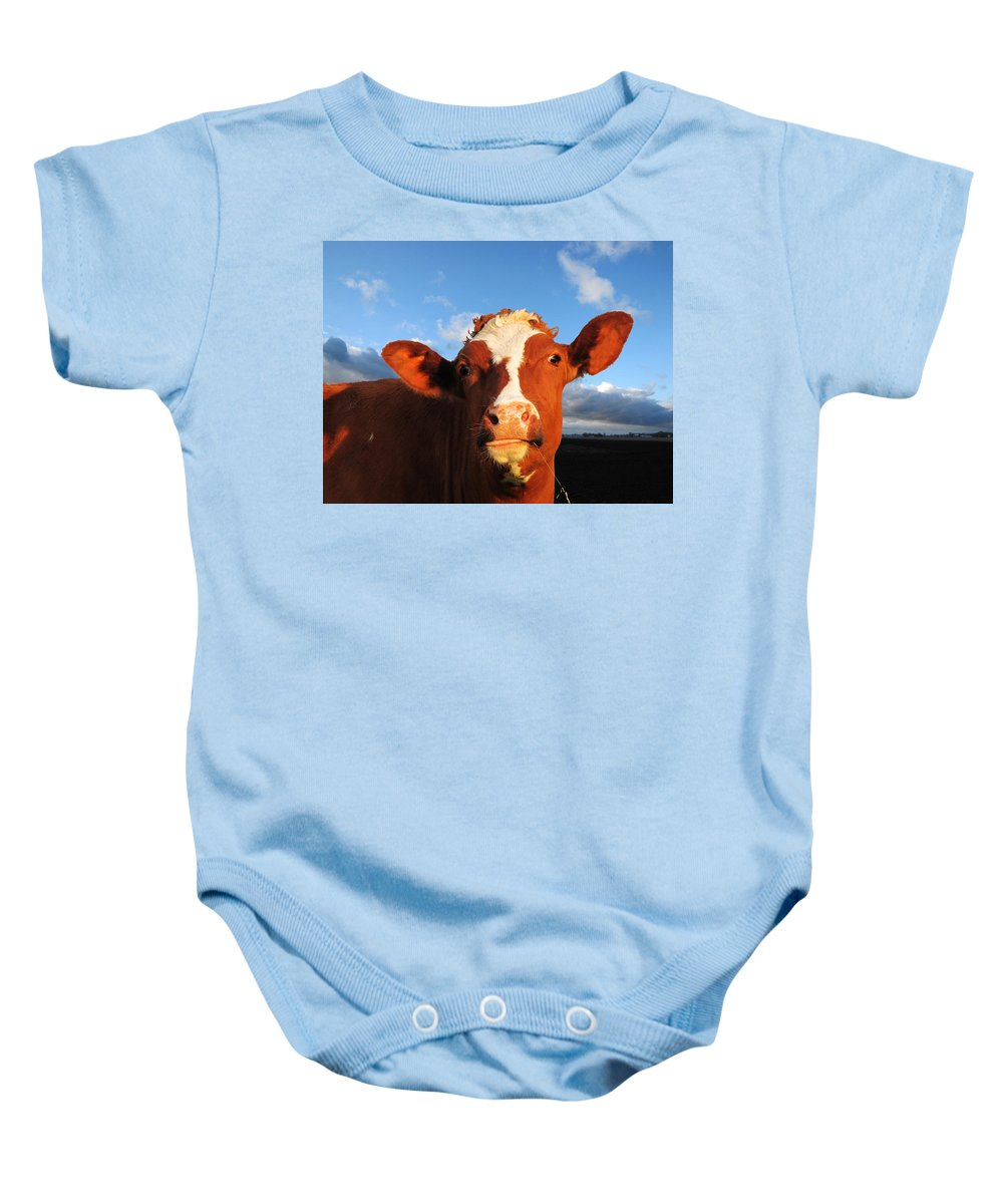 Farm Baby Onesie featuring the photograph Moo Don't Say Cow by Ron Tackett