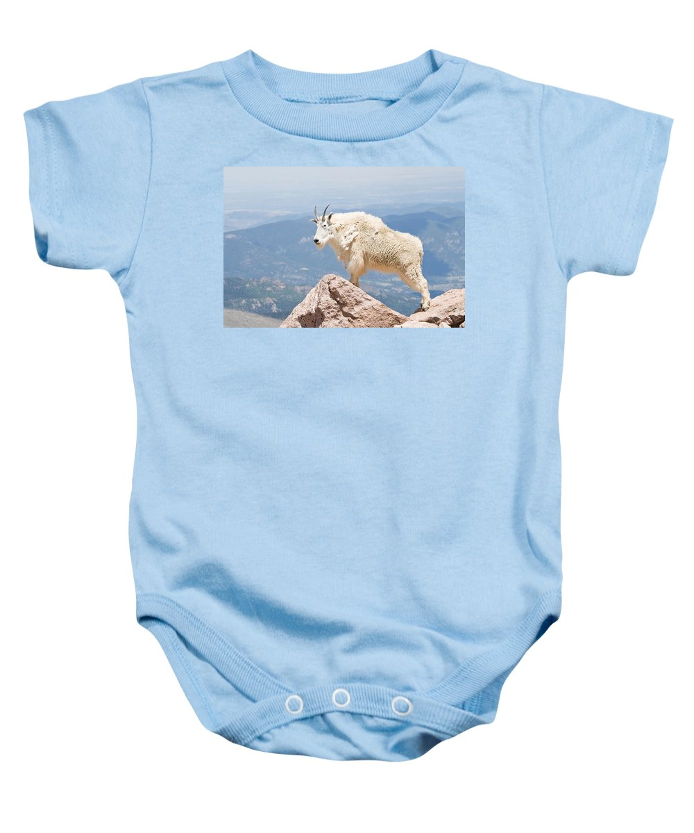 Mountain Goat Baby Onesie featuring the photograph Mountain Goat Up High by Jaci Harmsen