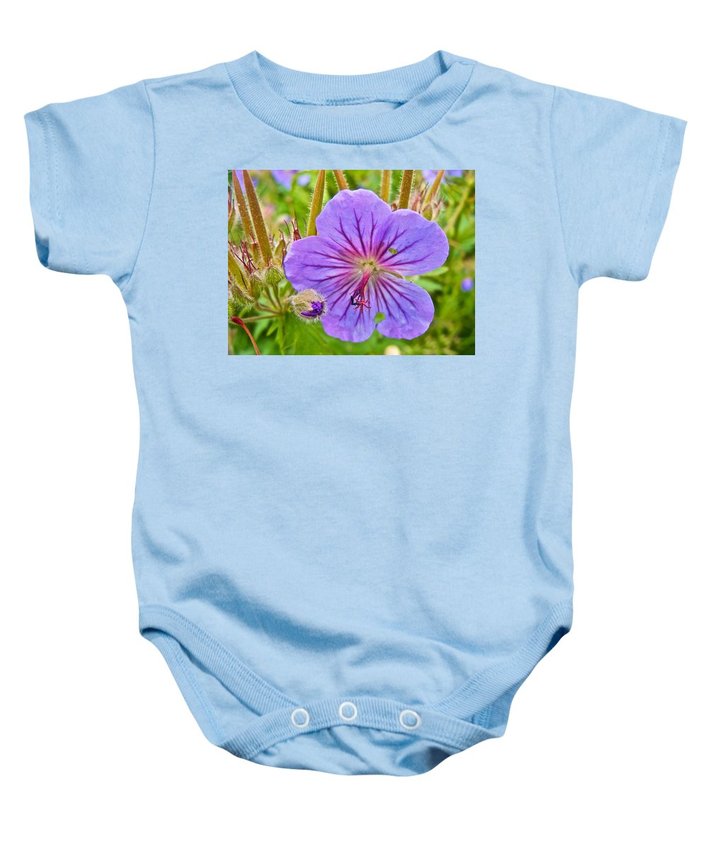 Northern Geranium By Transfiguration Of Our Lord Russian Orthodox Church In Ninilchik Baby Onesie featuring the photograph Northern Geranium By Transfiguration Of Our Lord Russian Orthodox Church In Ninilchik-ak by Ruth Hager