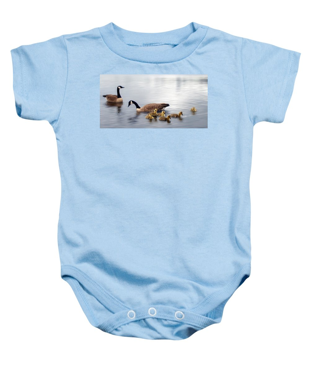 Water Baby Onesie featuring the photograph Panoramic Goose Family Outing by Lisa Knechtel