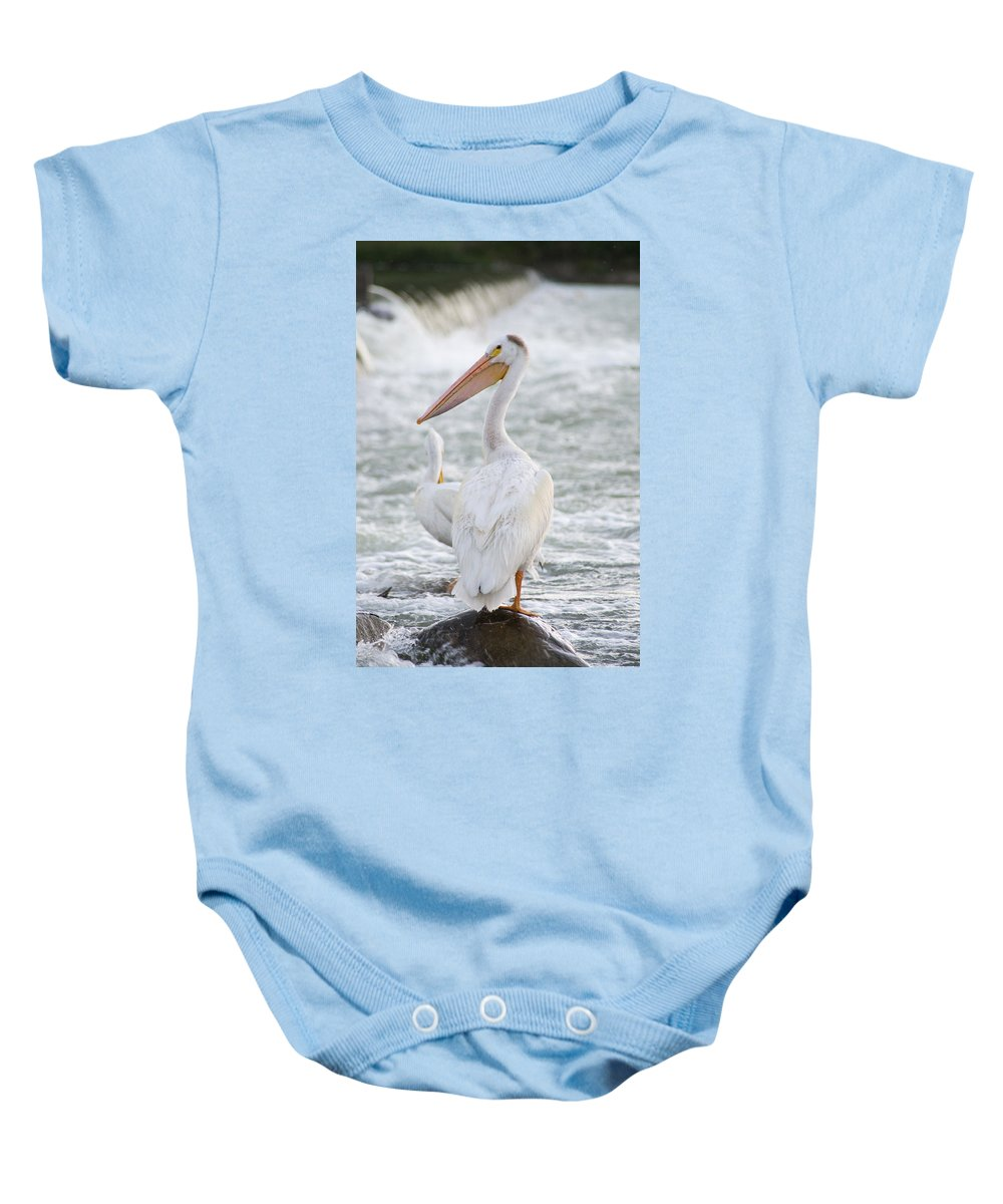 Pelicans Baby Onesie featuring the photograph Pelican Watch by Dwayne Schnell