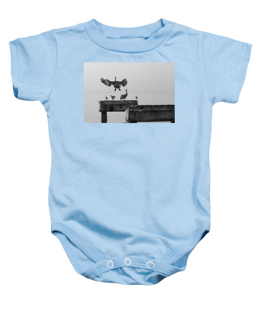 Key West Baby Onesie featuring the photograph Pelicans by Scott Meyer
