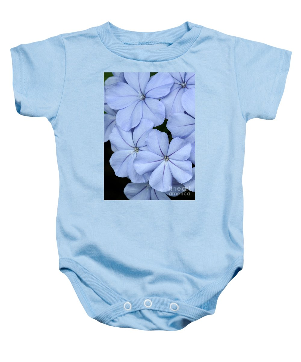 Macro Baby Onesie featuring the photograph Prettiest Plumbago by Sabrina L Ryan
