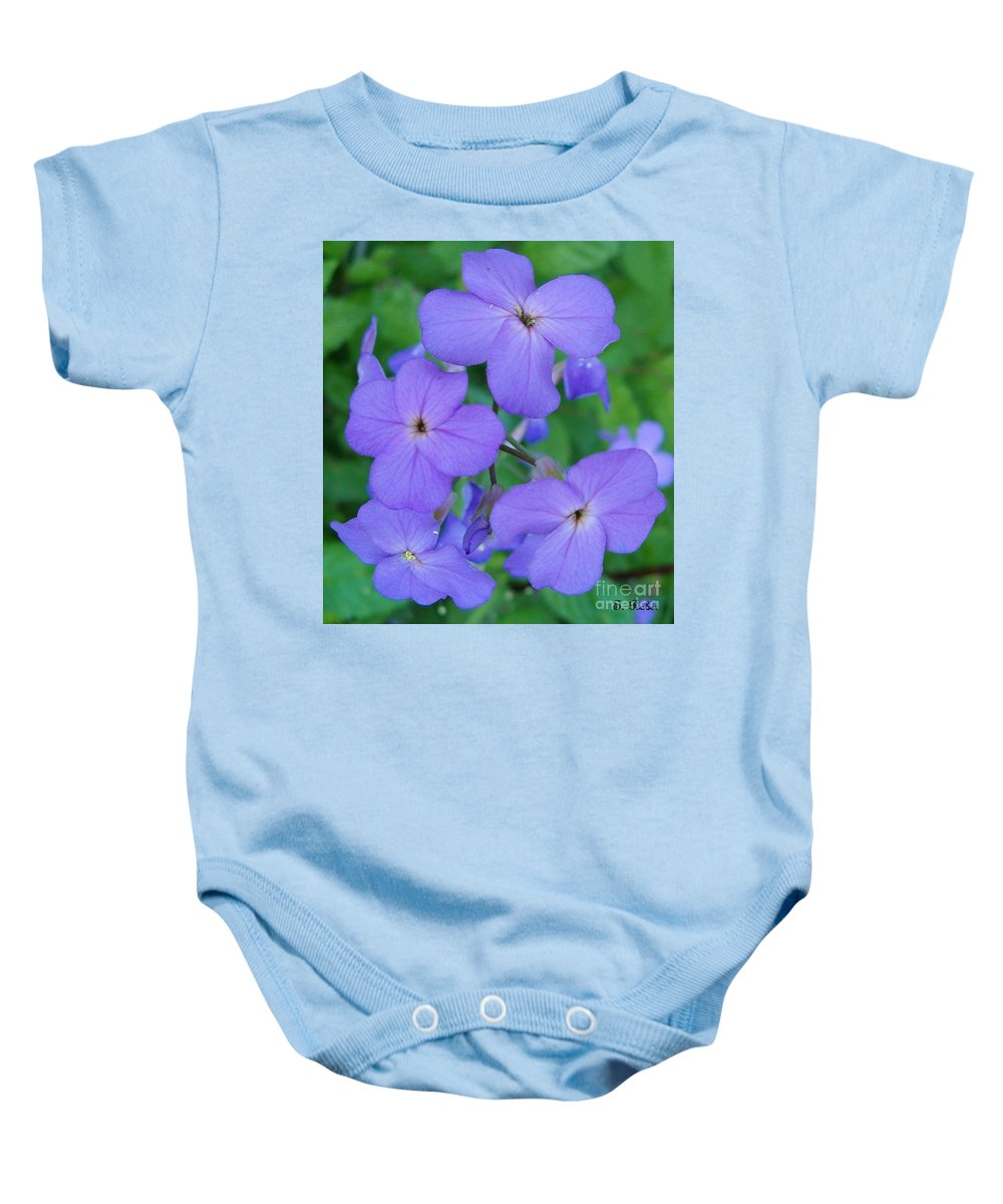 Flowers Baby Onesie featuring the photograph Purple Passion by Sara Raber