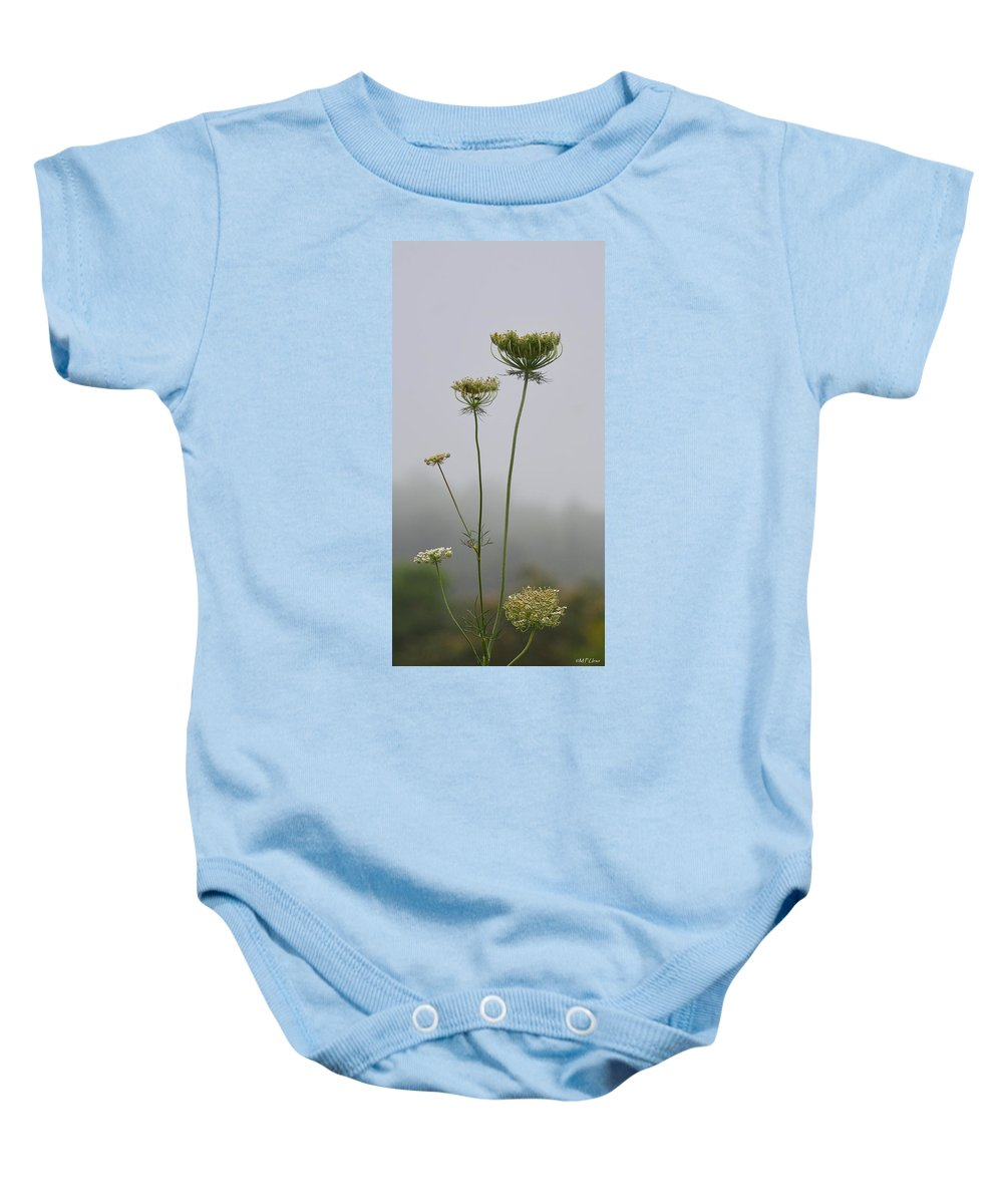 Queen's Lace On A Foggy Morning Baby Onesie featuring the photograph Queen's Lace On A Foggy Morning by Maria Urso