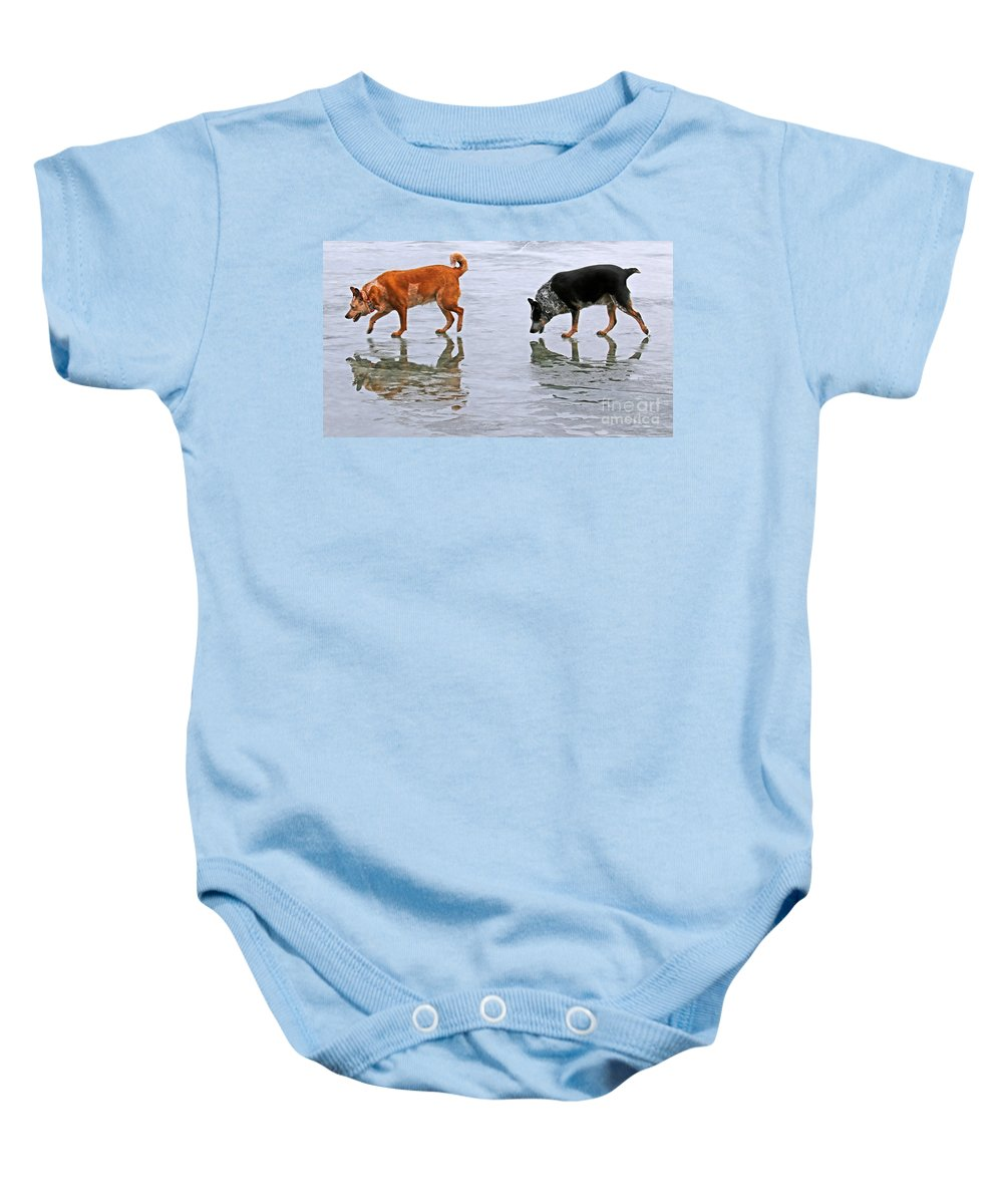 The Australian Cattle Dog Baby Onesie featuring the photograph Red And Blue Heelers by Elizabeth Winter