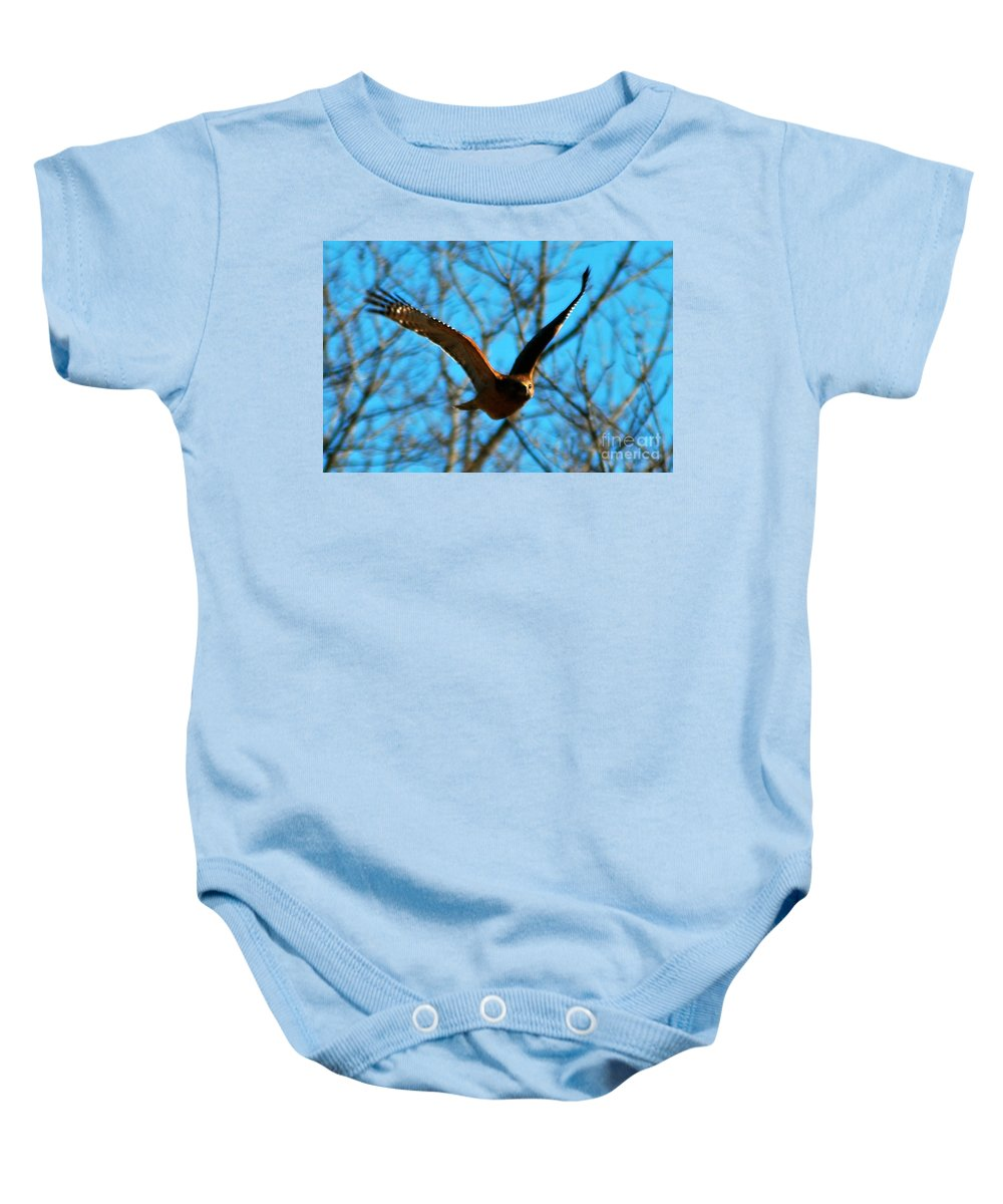 Raptors Baby Onesie featuring the photograph Red Tail Hawk In Flight by Peggy Franz