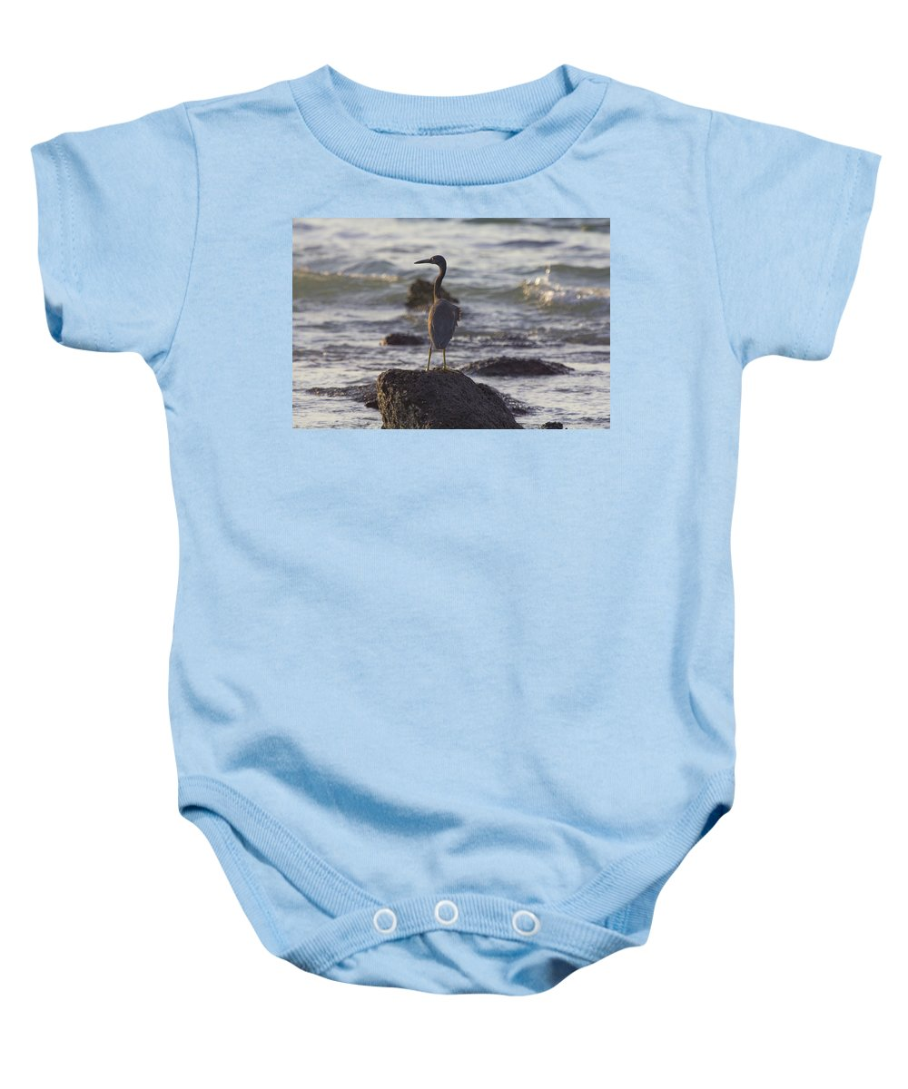Reef Egret Baby Onesie featuring the photograph Reef Egret by Douglas Barnard
