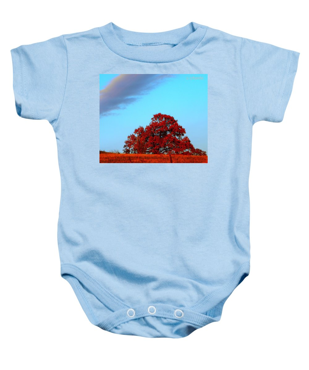 Landscape Baby Onesie featuring the photograph Rural Route by Chris Berry