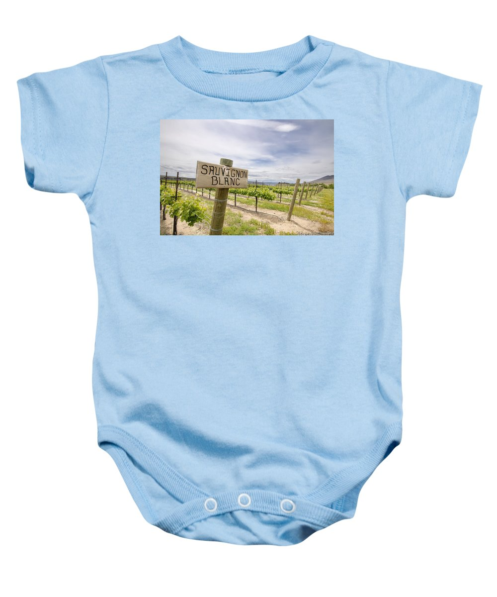 Sauvignon Baby Onesie featuring the photograph Sauvignon Blanc Grapes Growing In Vineyard by Jit Lim