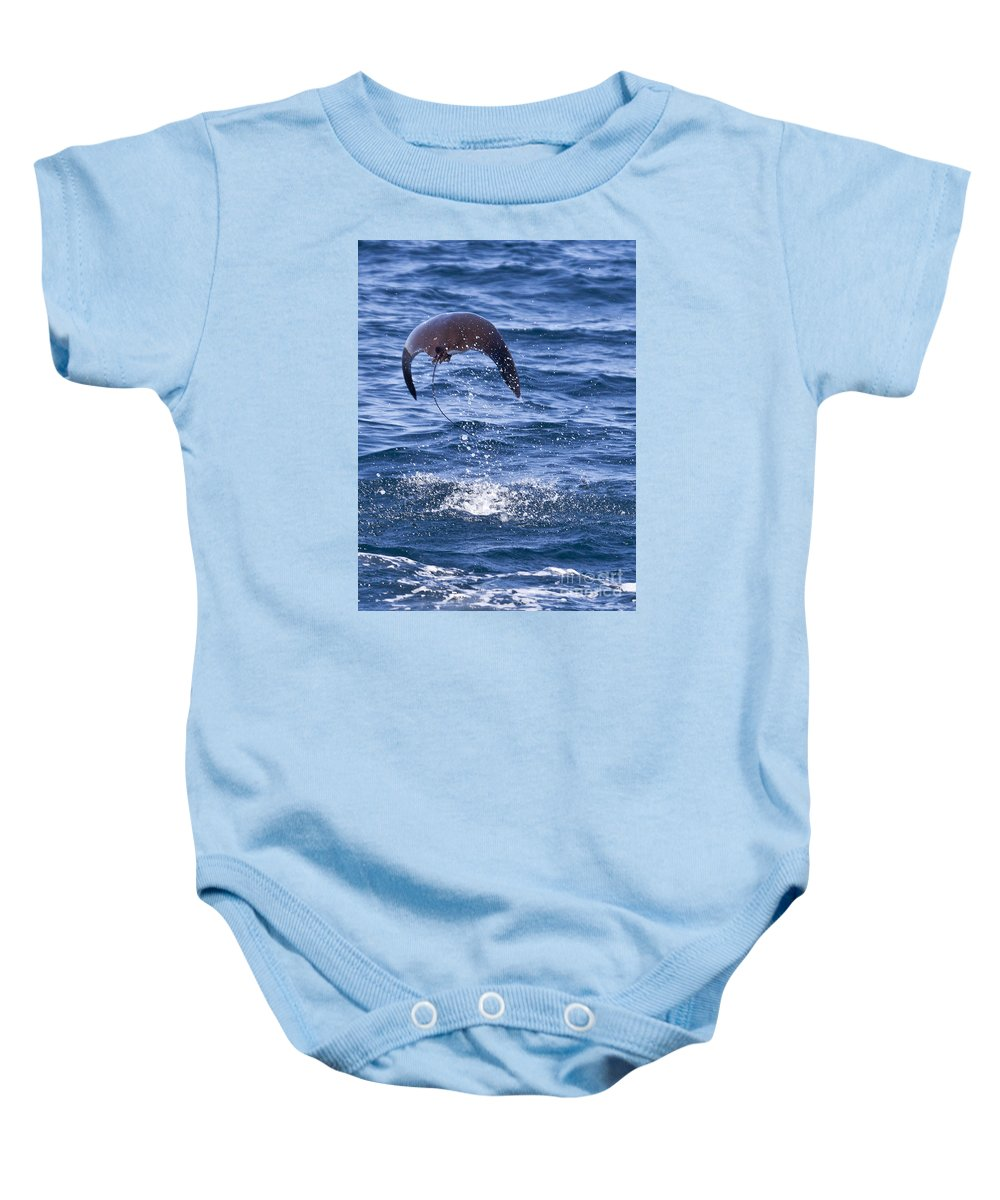 Smoothtail Mobula Baby Onesie featuring the photograph Smoothtail Mobula Mobula Munkiana Breaching by Liz Leyden