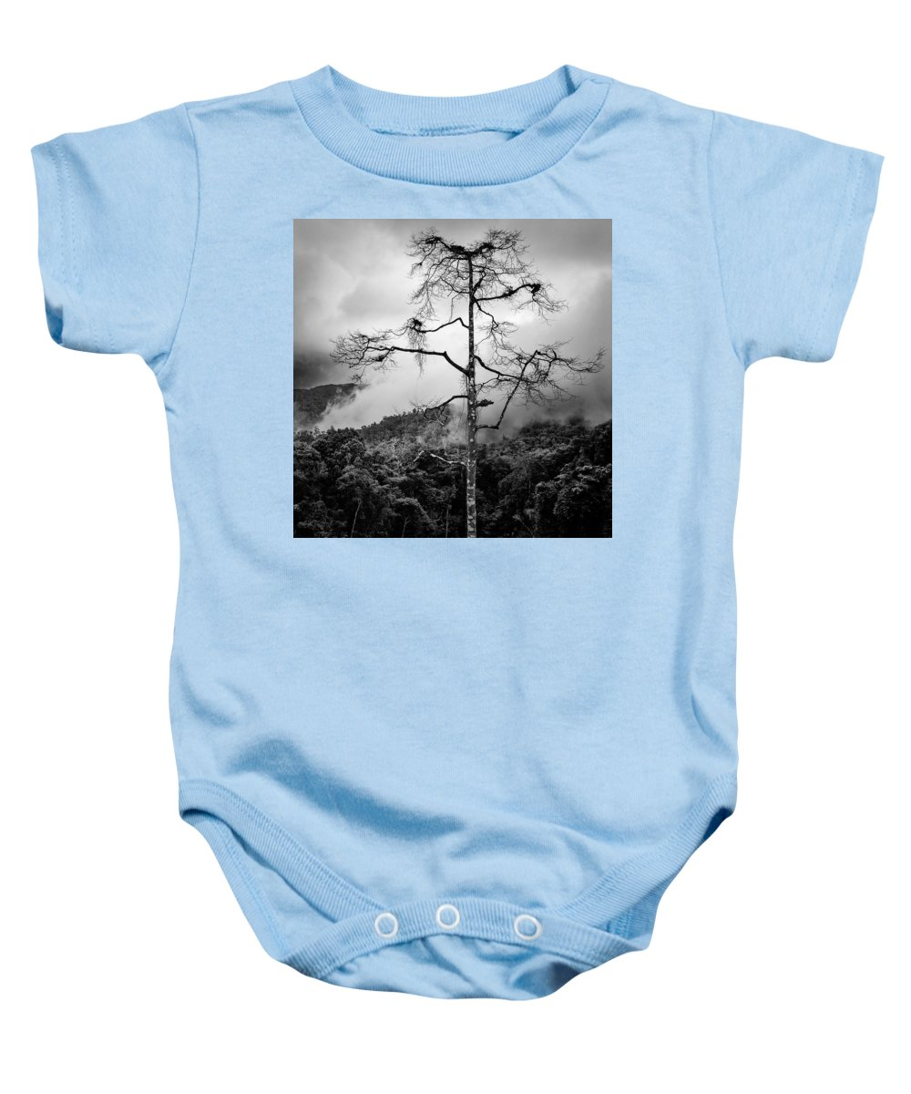 Cameron Highlands Baby Onesie featuring the photograph Solitary Tree by Dave Bowman