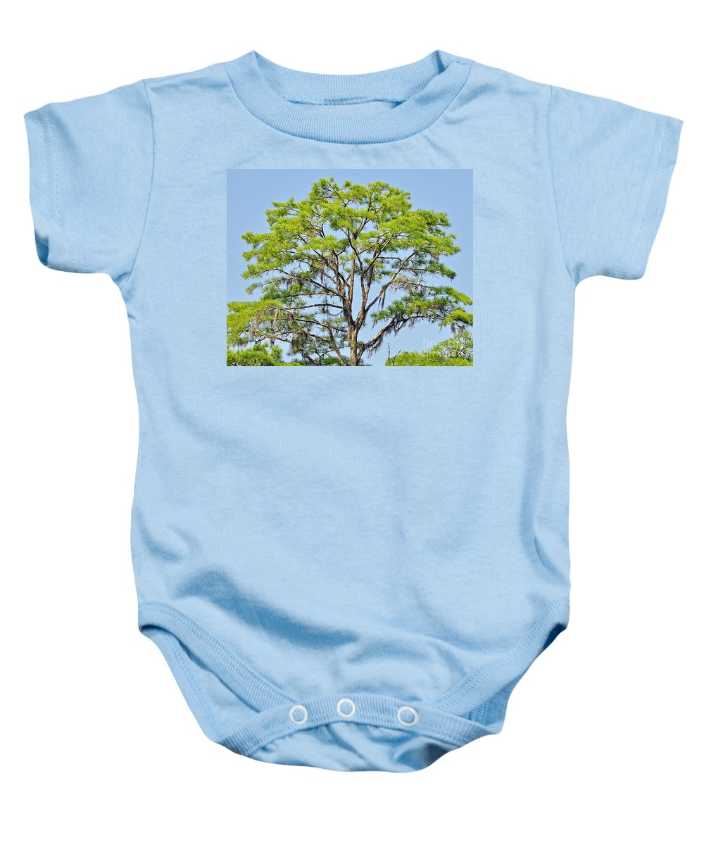 Cypress Baby Onesie featuring the photograph Southern Cypress by Al Powell Photography USA