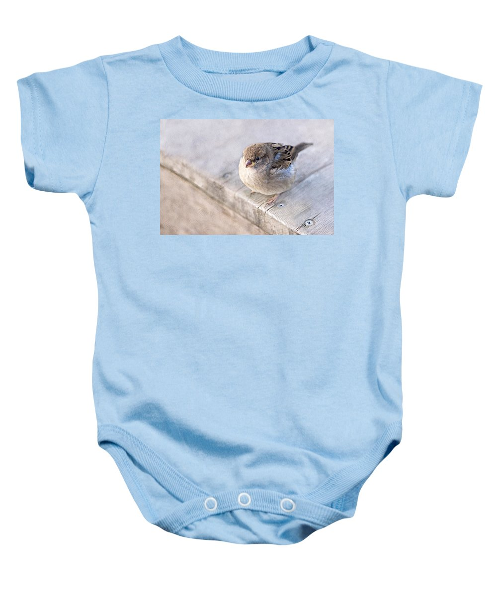 Sparrow Baby Onesie featuring the photograph Sparrow - Takeoff Problems by Alexander Senin