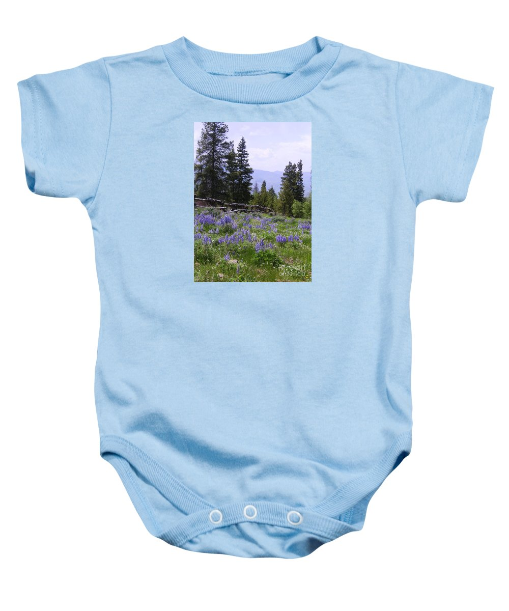 Mountains Baby Onesie featuring the photograph Spring Mountain Lupines by Crystal Miller